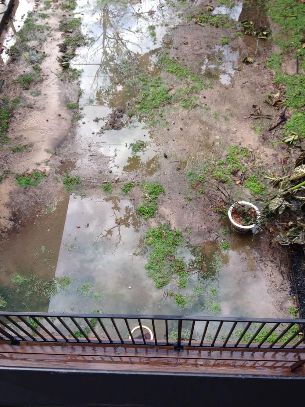 Muddy back garden
